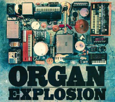 Hansi Enzensperger - Organ Explosion