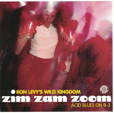 Ron Levy - Zim Zam Zoom